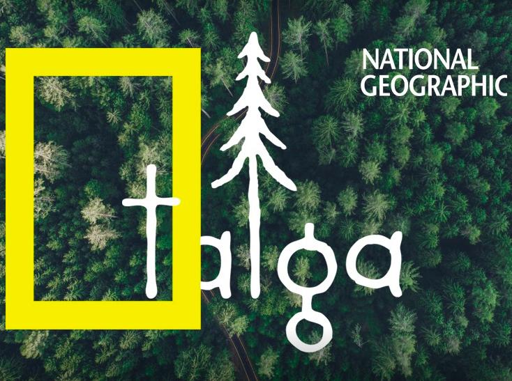 Эко-проект Тайга